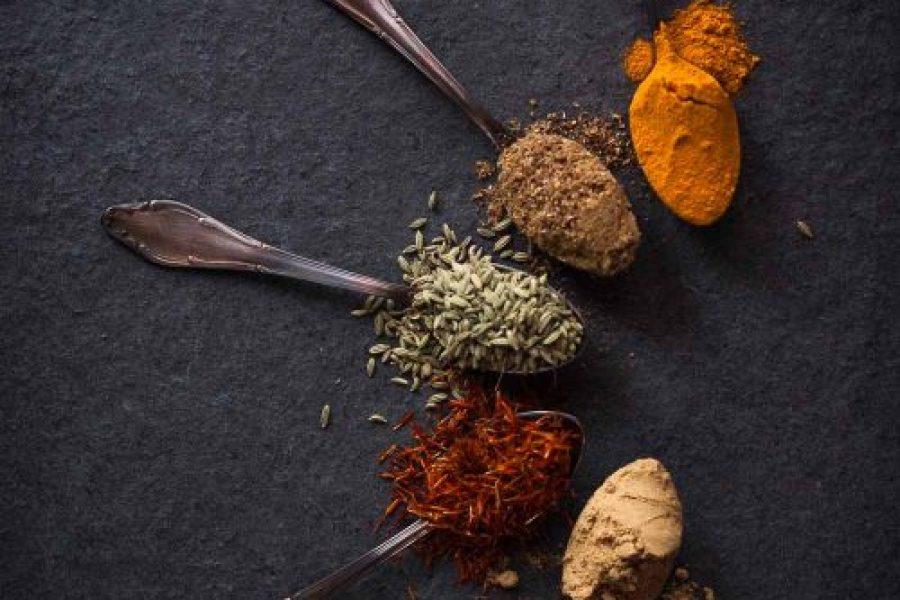 Erfahrungsbericht ayurvedisches Ernährungs- und Gesundheitscoaching